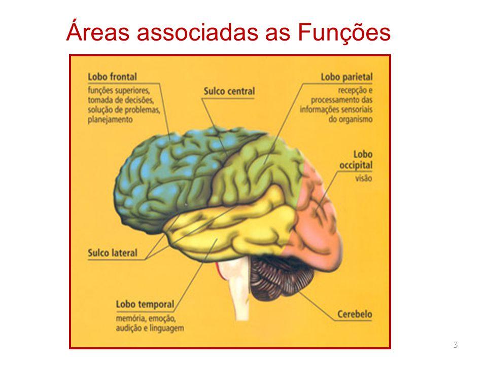 Áreas associadas as Funções 3