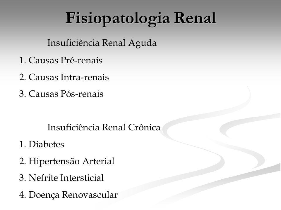 Fisiopatologia Renal Insuficiência Renal Aguda 1. Causas Pré-renais 2. Causas Intra-renais 3. Causas Pós-renais Insuficiência Renal Crônica 1. Diabete