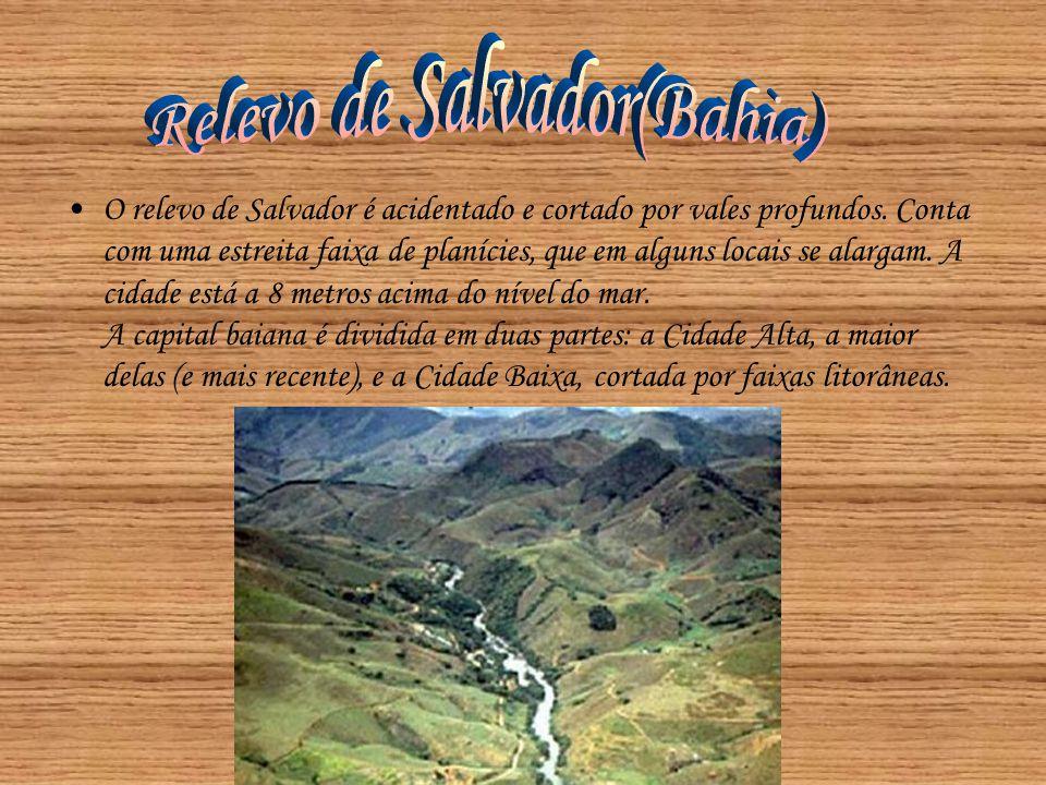 •O relevo de Salvador é acidentado e cortado por vales profundos. Conta com uma estreita faixa de planícies, que em alguns locais se alargam. A cidade