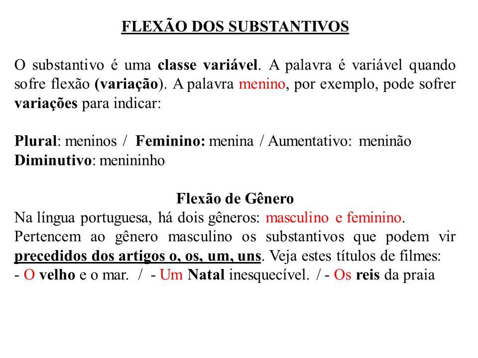 FLEXÃO DOS SUBSTANTIVOS O substantivo é uma classe variável. A palavra é variável quando sofre flexão (variação). A palavra menino, por exemplo, pode