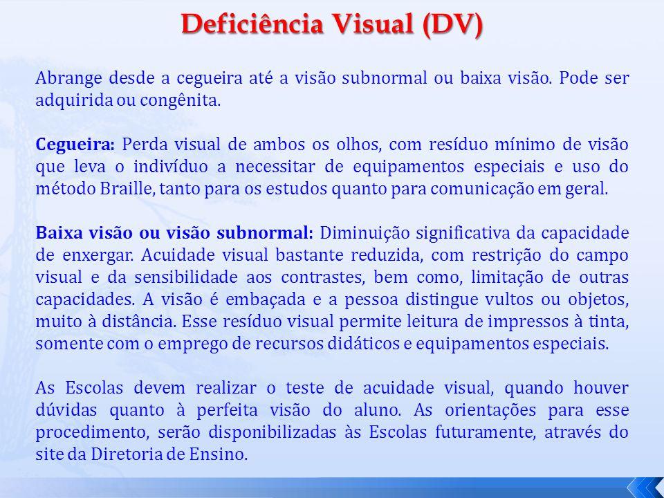 Deficiência Visual (DV) Abrange desde a cegueira até a visão subnormal ou baixa visão.