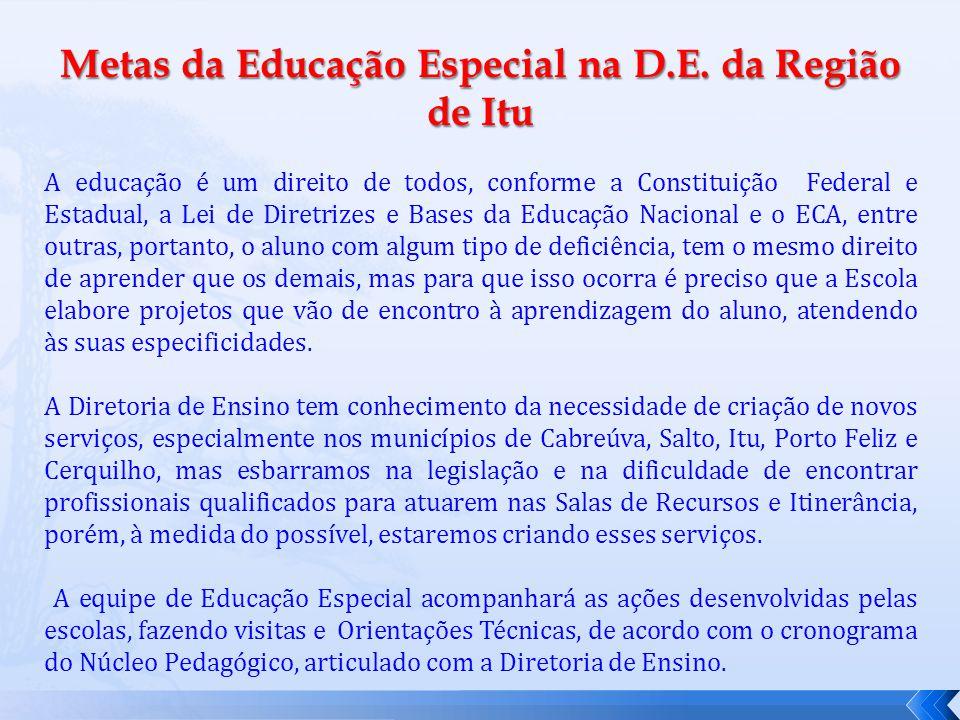 Metas da Educação Especial na D.E.