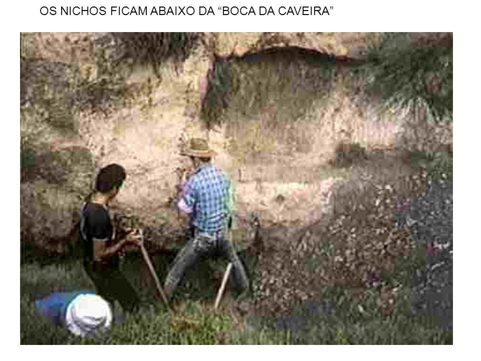 """OS NICHOS FICAM ABAIXO DA """"BOCA DA CAVEIRA"""""""
