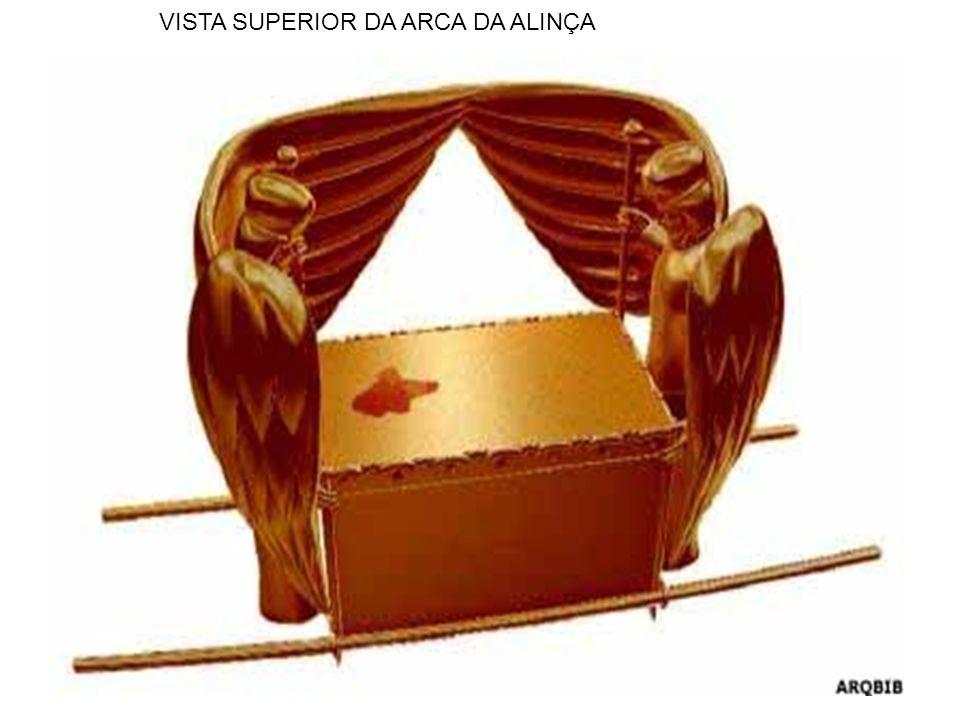 VISTA SUPERIOR DA ARCA DA ALINÇA