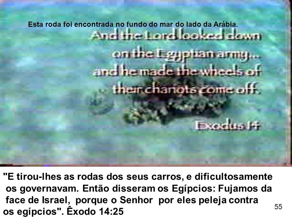 Esta roda foi encontrada no fundo do mar do lado da Arábia.