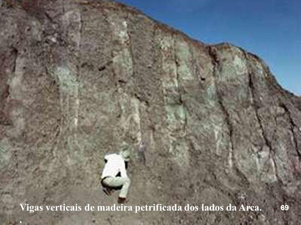 Vigas verticais de madeira petrificada dos lados da Arca.. 69