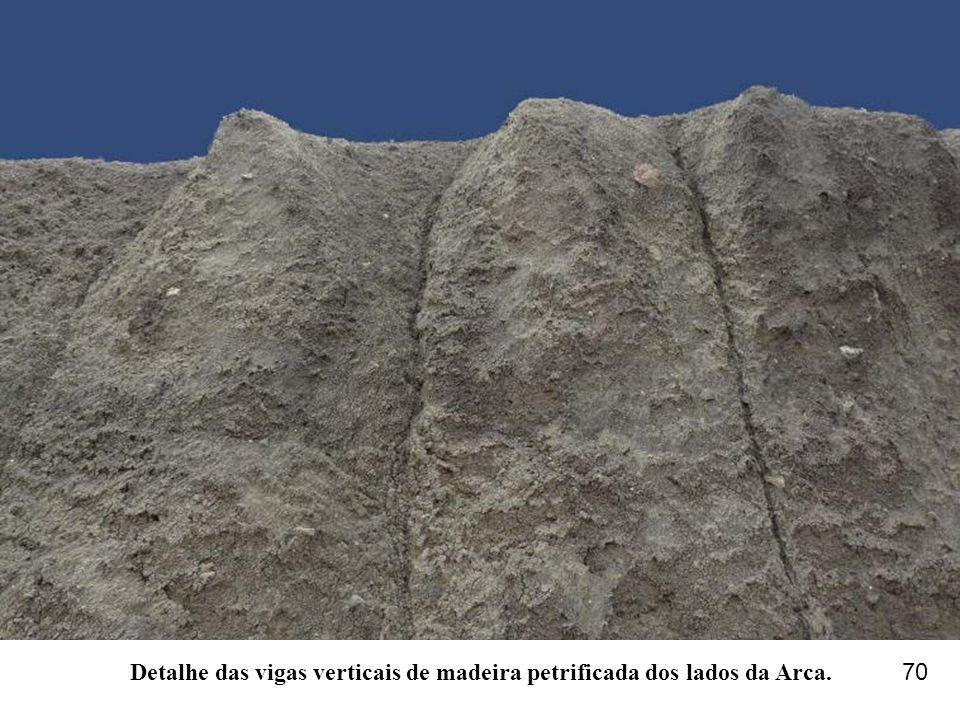 Detalhe das vigas verticais de madeira petrificada dos lados da Arca. 70