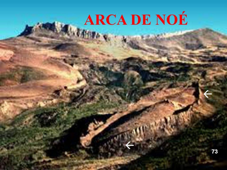  ARCA DE NOÉ   73