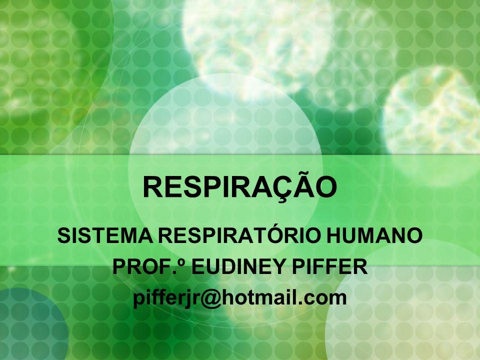 RESPIRAÇÃO SISTEMA RESPIRATÓRIO HUMANO PROF.º EUDINEY PIFFER pifferjr@hotmail.com