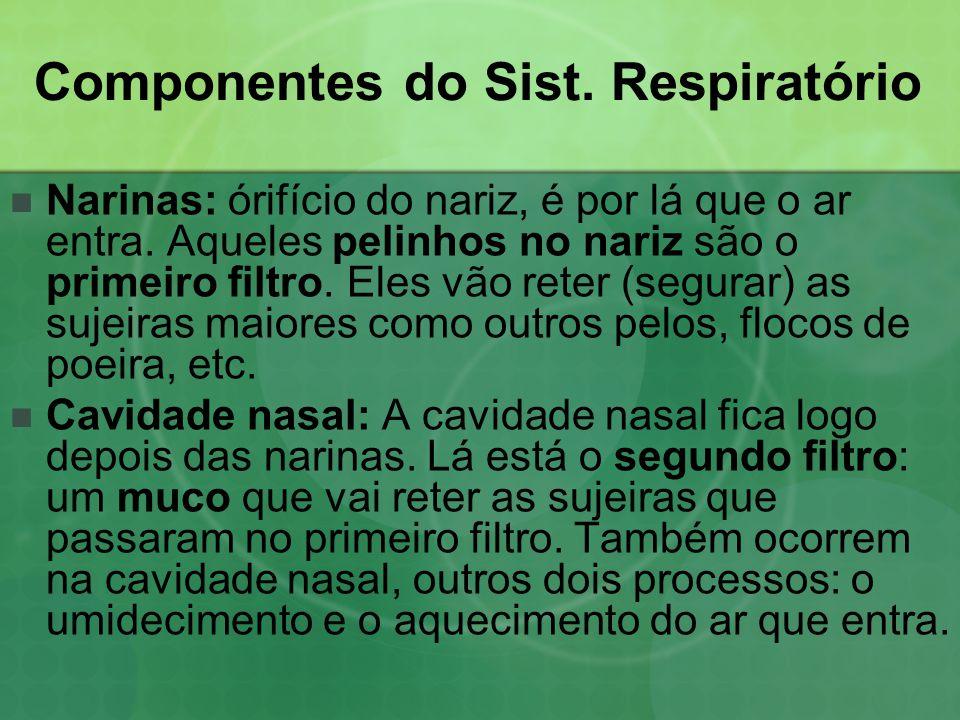 Componentes do Sist.