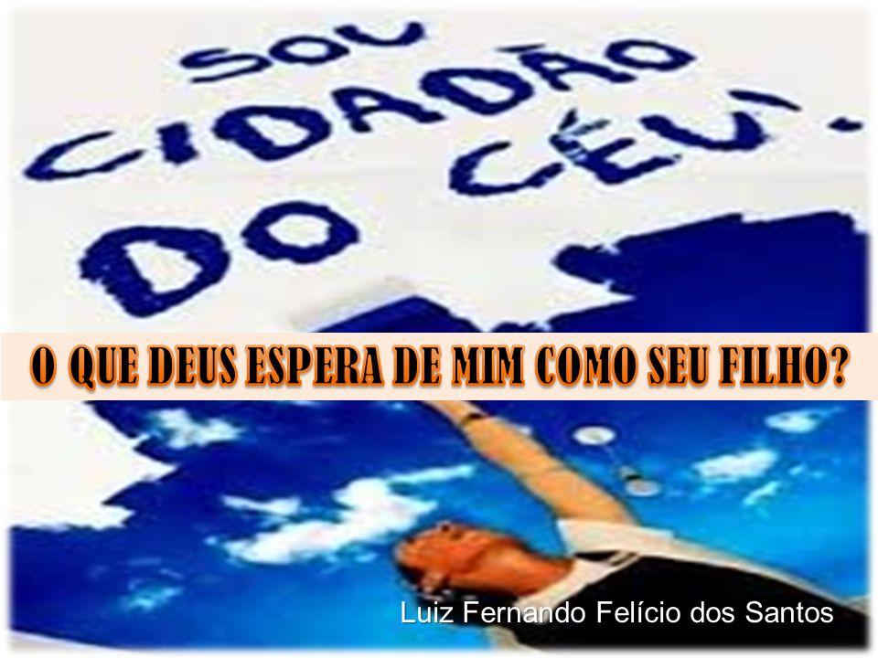 Luiz Fernando Felício dos Santos