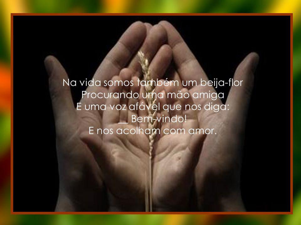 Na vida somos também um beija-flor Procurando uma mão amiga E uma voz afável que nos diga: __ Bem-vindo.