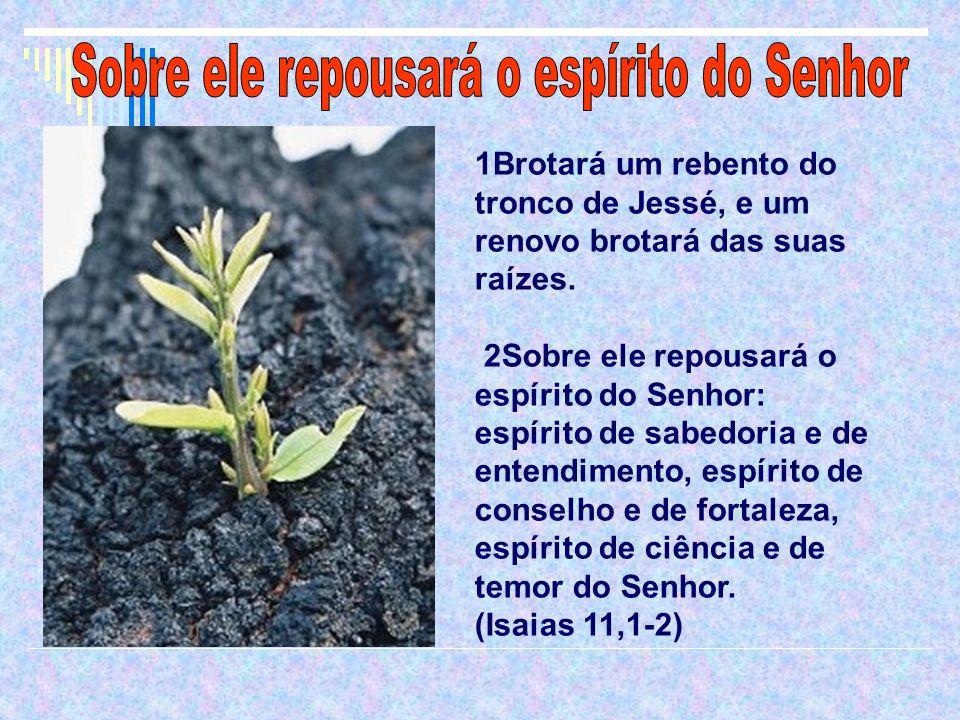 1Brotará um rebento do tronco de Jessé, e um renovo brotará das suas raízes.