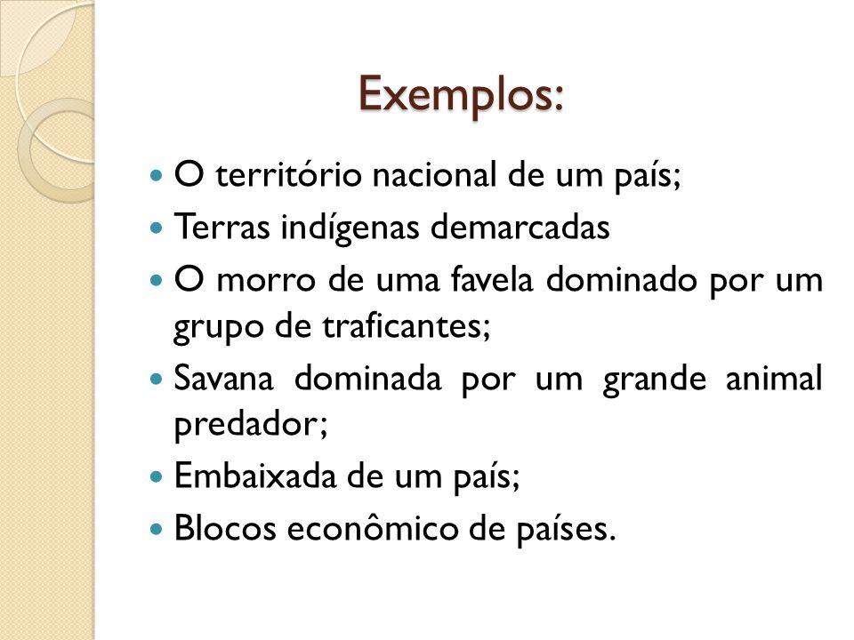 Exemplos:  O território nacional de um país;  Terras indígenas demarcadas  O morro de uma favela dominado por um grupo de traficantes;  Savana dom