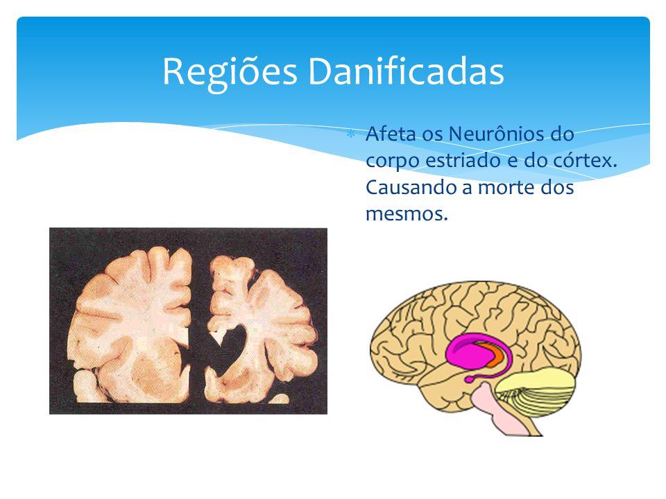 Regiões Danificadas  Afeta os Neurônios do corpo estriado e do córtex. Causando a morte dos mesmos.