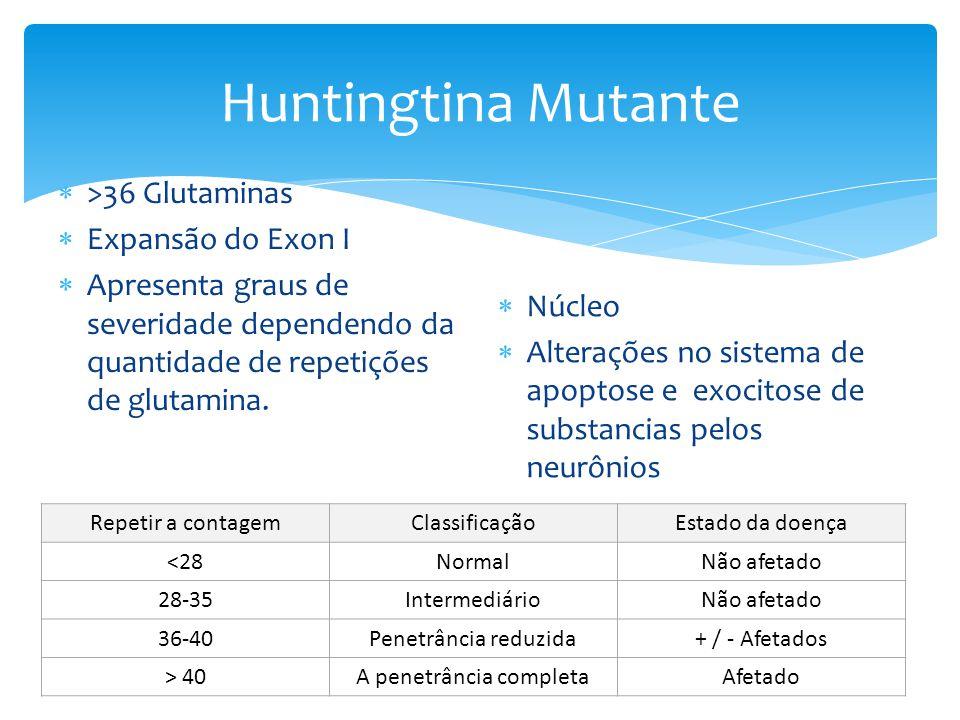 Huntingtina Mutante  >36 Glutaminas  Expansão do Exon I  Apresenta graus de severidade dependendo da quantidade de repetições de glutamina.  Núcle