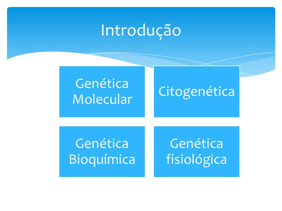 Função dos genes envolvidos Tratamento, prevenção Hereditariedade Diagnósticos genéticos preventivos Diagnóstico de doenças