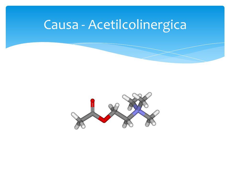 Causa - Acetilcolinergica