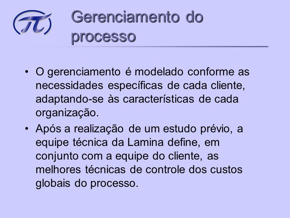 •O gerenciamento é modelado conforme as necessidades específicas de cada cliente, adaptando-se às características de cada organização.