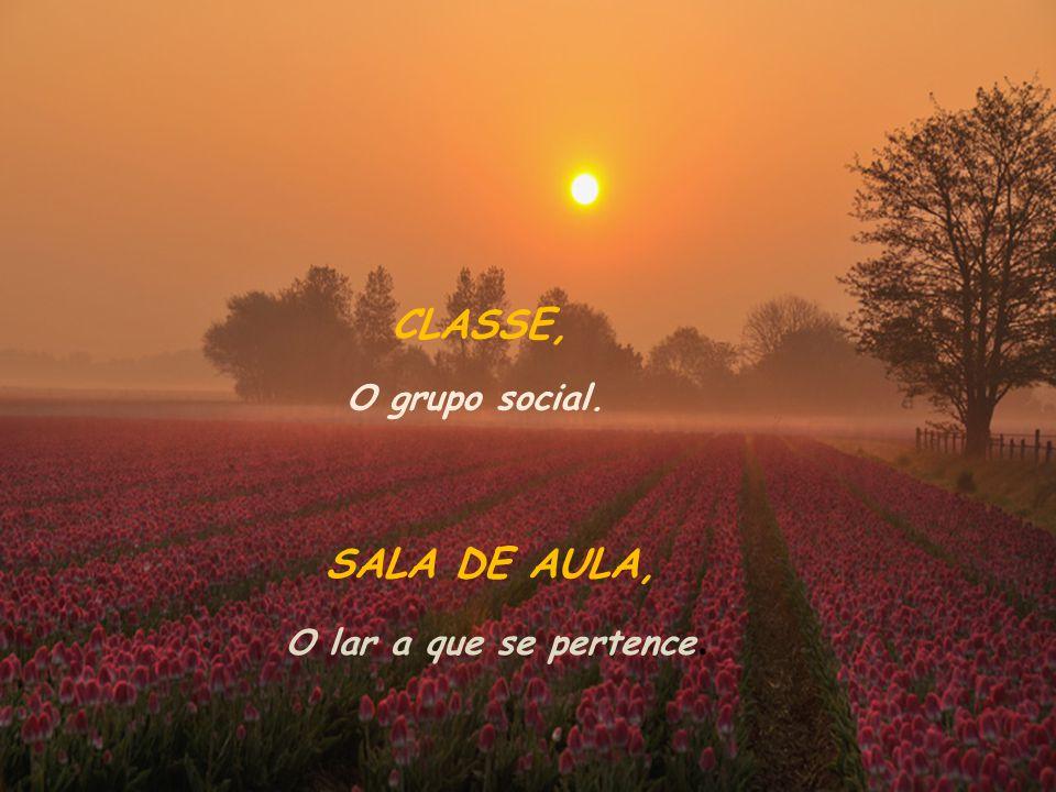 CLASSE, O grupo social. SALA DE AULA, O lar a que se pertence.