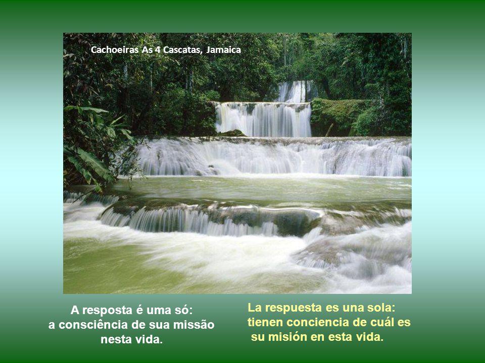 Chutes El Nicho, Sierra de Trinidad, Cuba O que move essas pessoas generosas a trabalhar diariamente, a não desistir nunca.