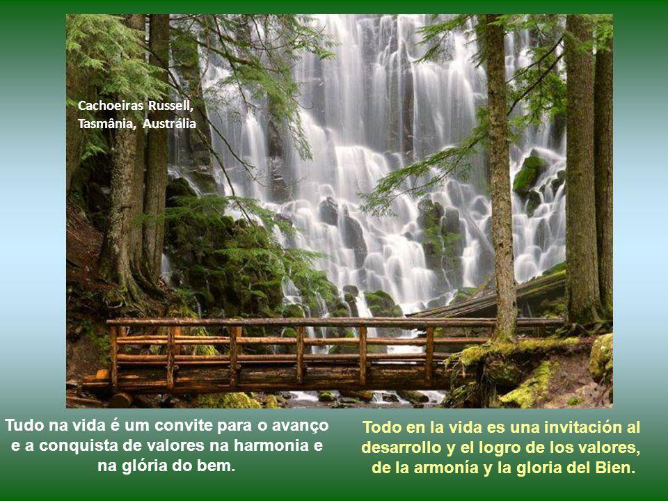 Cachoeiras Niagara, Ontario, Canada Escute a sua alma: ela tem a orientação sobre qual caminho seguir.