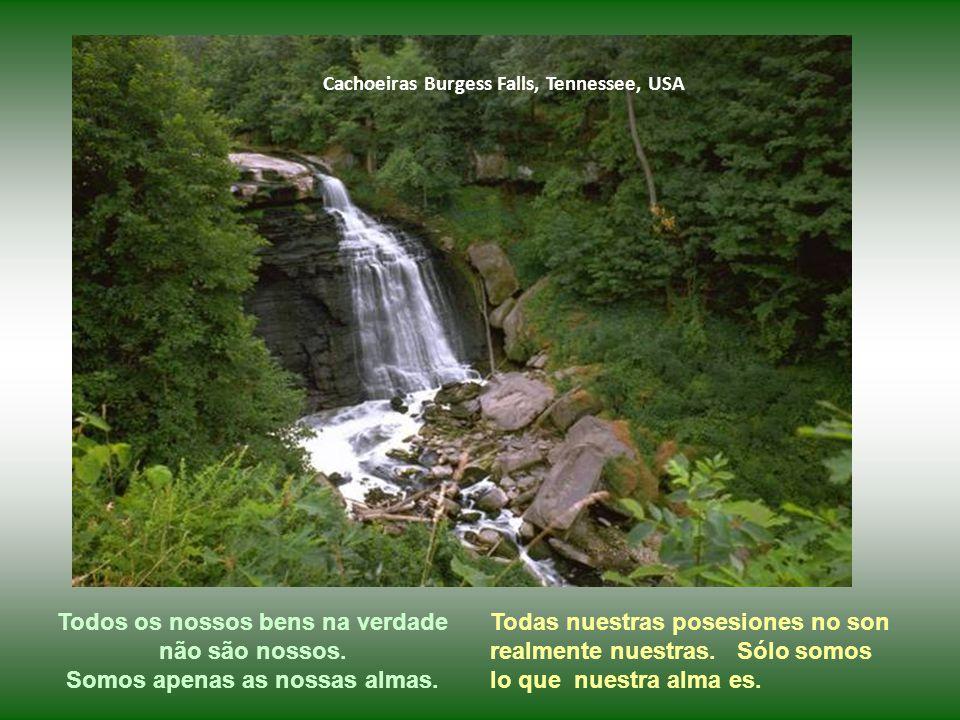 Cachoeiras Blue Nile, Etiópia Para mim, nossa vinda ao planeta Terra tem basicamente dois motivos: evoluir espiritualmente e aprender a amar melhor. P