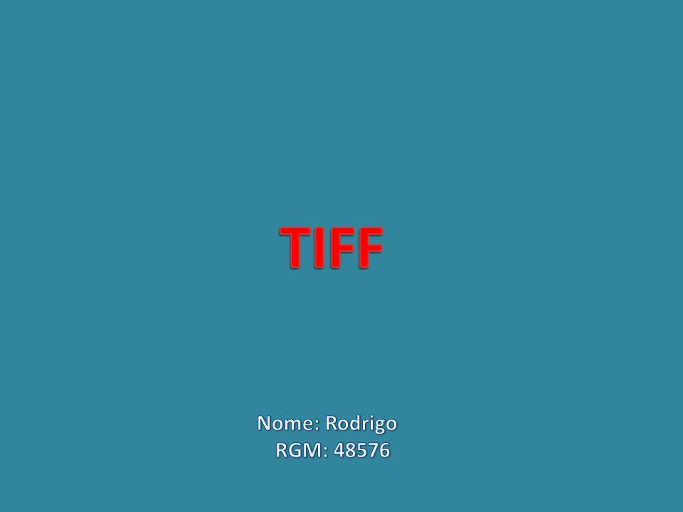 O Multi-page Uma diferença FINAL importante entre o TIFF e outros formatos de arquivo de imagem é que o TIFF define o suporte para múltiplas imagens em um único arquivo.