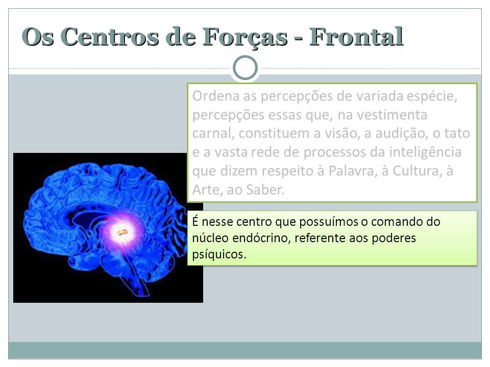 Os Centros de Forças - Frontal É nesse centro que possuímos o comando do núcleo endócrino, referente aos poderes psíquicos. Ordena as percepções de va