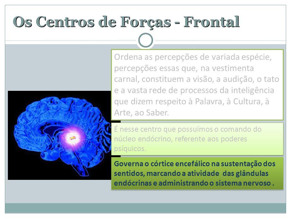 Os Centros de Forças - Frontal É nesse centro que possuímos o comando do núcleo endócrino, referente aos poderes psíquicos. Governa o córtice encefáli