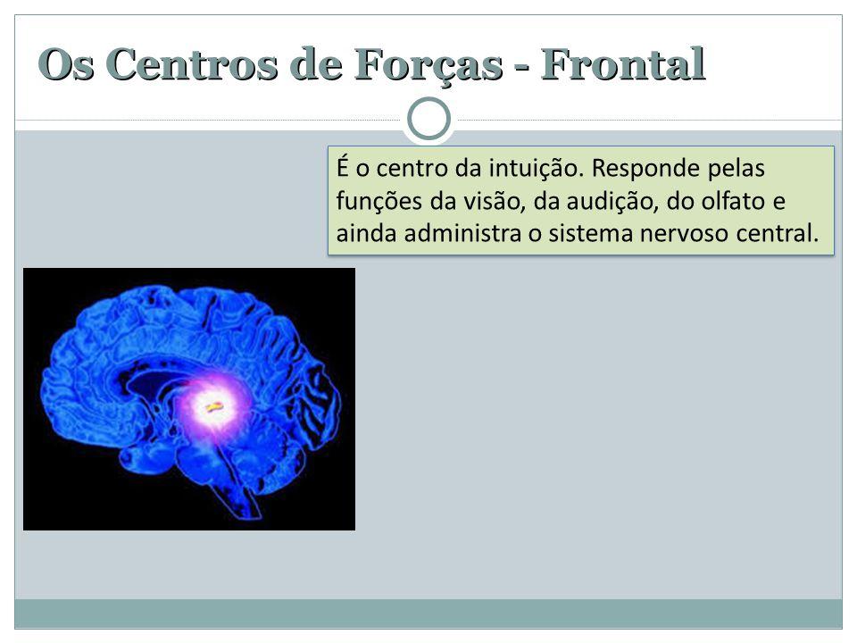 Os Centros de Forças - Frontal É o centro da intuição. Responde pelas funções da visão, da audição, do olfato e ainda administra o sistema nervoso cen