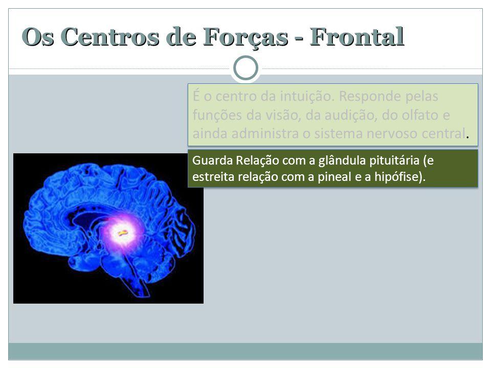 Os Centros de Forças - Frontal Guarda Relação com a glândula pituitária (e estreita relação com a pineal e a hipófise). É o centro da intuição. Respon