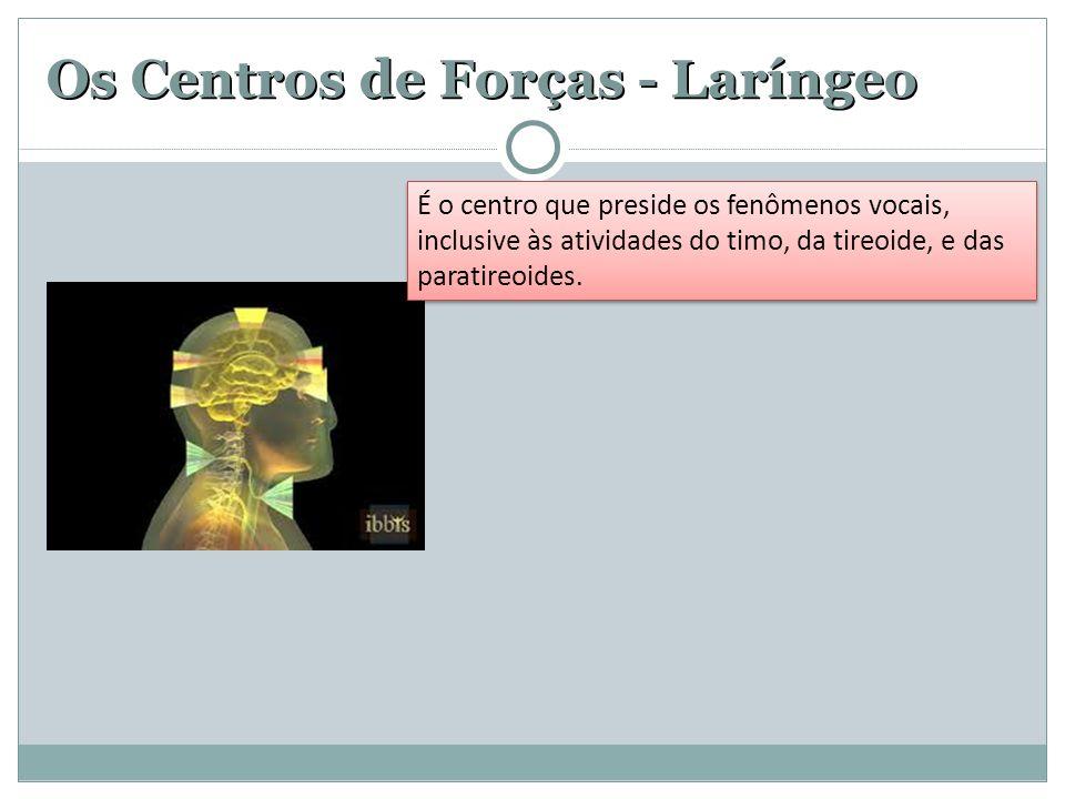 Os Centros de Forças - Laríngeo É o centro que preside os fenômenos vocais, inclusive às atividades do timo, da tireoide, e das paratireoides.