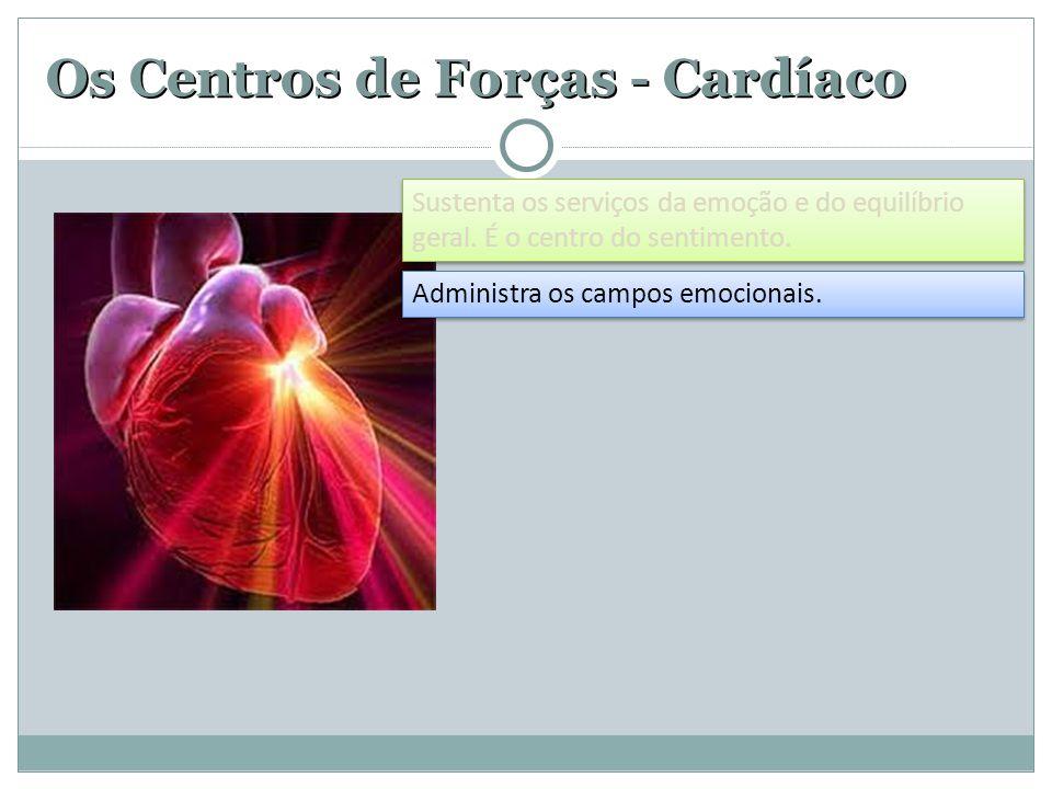 Os Centros de Forças - Cardíaco Administra os campos emocionais. Sustenta os serviços da emoção e do equilíbrio geral. É o centro do sentimento.