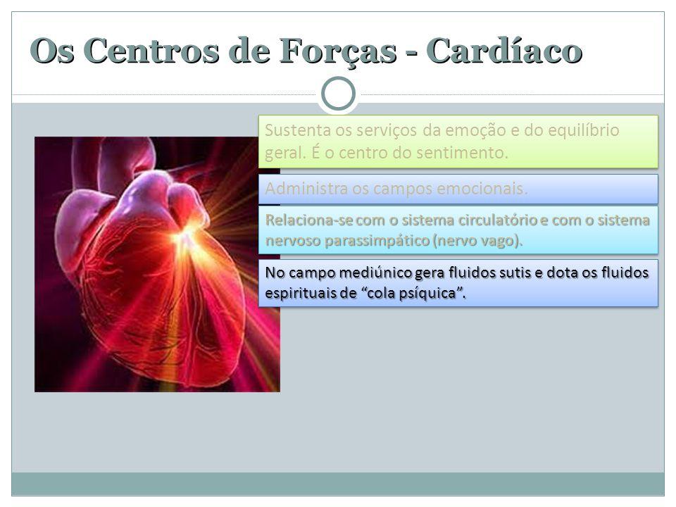 Os Centros de Forças - Cardíaco Administra os campos emocionais. Relaciona-se com o sistema circulatório e com o sistema nervoso parassimpático (nervo
