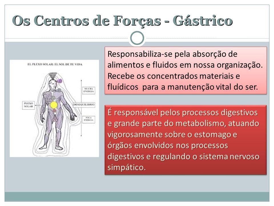Os Centros de Forças - Gástrico Responsabiliza-se pela absorção de alimentos e fluidos em nossa organização.