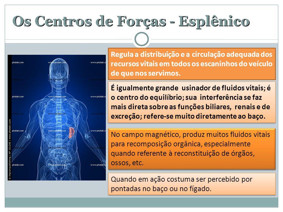 Os Centros de Forças - Esplênico No campo magnético, produz muitos fluidos vitais para recomposição orgânica, especialmente quando referente à reconstituição de órgãos, ossos, etc.