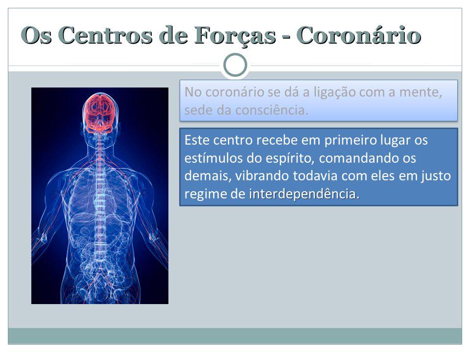 Os Centros de Forças - Coronário No coronário se dá a ligação com a mente, sede da consciência. interdependência. Este centro recebe em primeiro lugar