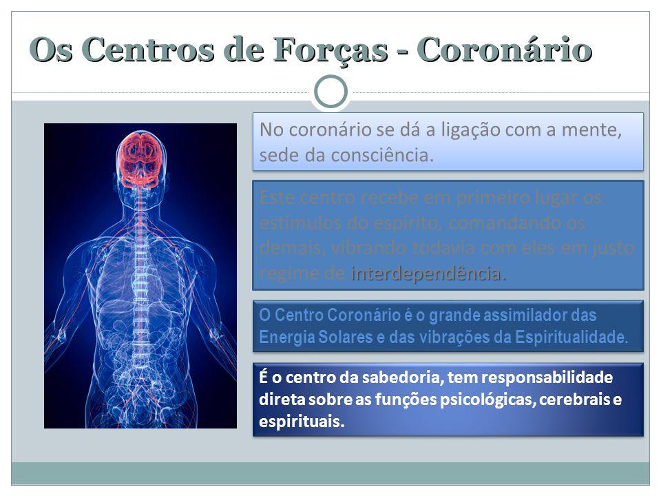 Os Centros de Forças - Coronário No coronário se dá a ligação com a mente, sede da consciência. O Centro Coronário é o grande assimilador das Energia
