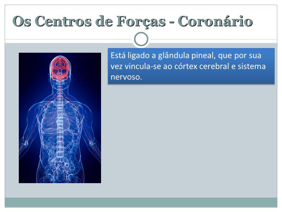 Os Centros de Forças - Coronário Está ligado a glândula pineal, que por sua vez vincula-se ao córtex cerebral e sistema nervoso.