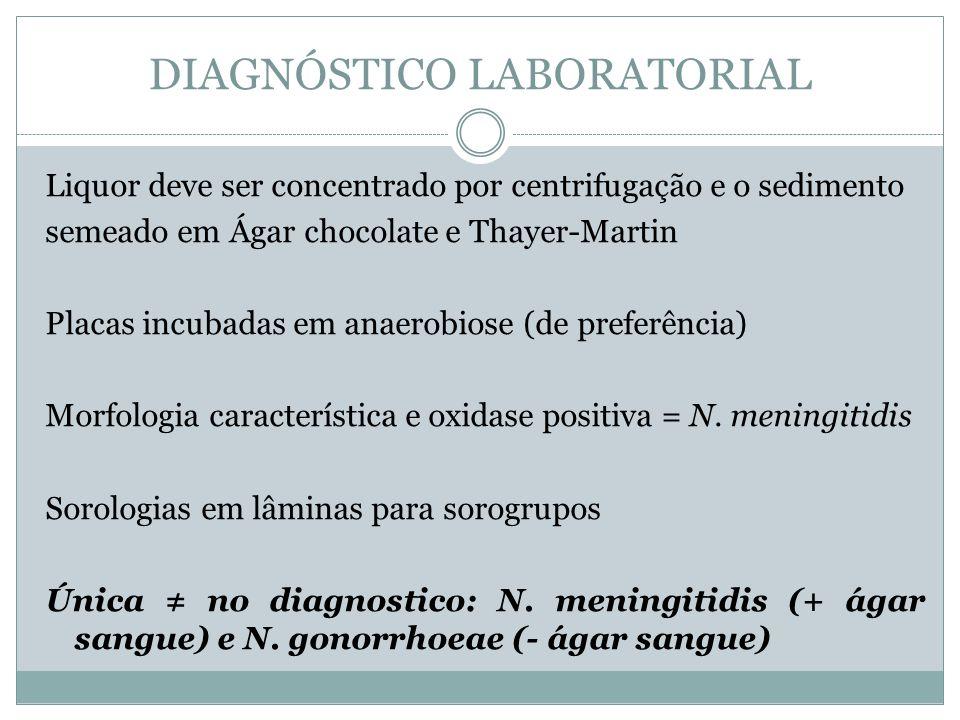 Liquor deve ser concentrado por centrifugação e o sedimento semeado em Ágar chocolate e Thayer-Martin Placas incubadas em anaerobiose (de preferência)