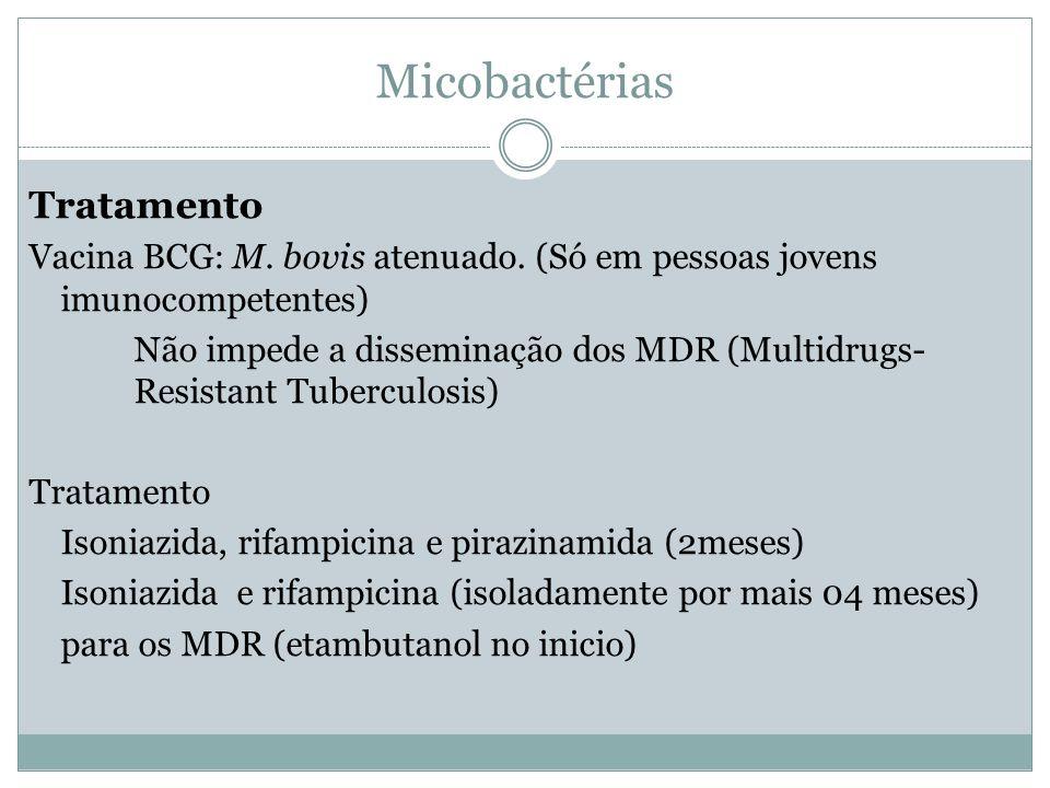 Micobactérias Tratamento Vacina BCG: M. bovis atenuado. (Só em pessoas jovens imunocompetentes) Não impede a disseminação dos MDR (Multidrugs- Resista