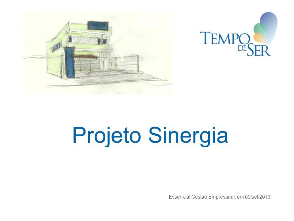 Projeto Sinergia Essencial Gestão Empresarial, em 09/set/2013