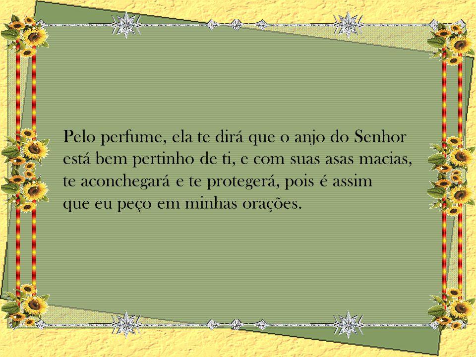 Créditos: Grupo Noeli Slides Texto: À ti com carinho - Desconheço autoria Música: Do You Wana Dance Formatação: Noeli noeli_quadros@ig.com.br
