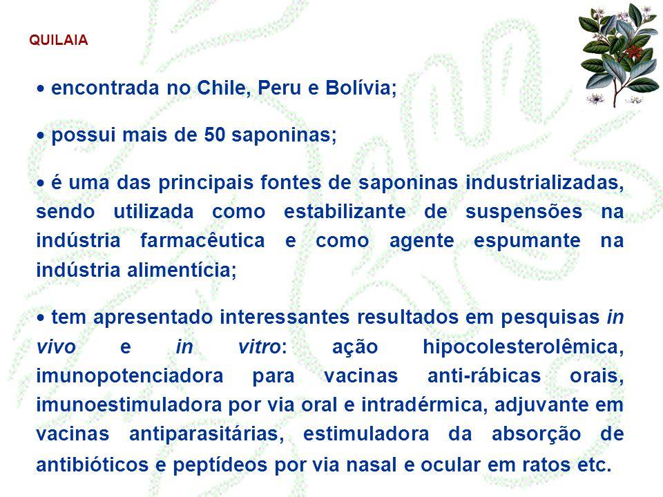 QUILAIA  encontrada no Chile, Peru e Bolívia;  possui mais de 50 saponinas;  é uma das principais fontes de saponinas industrializadas, sendo utili