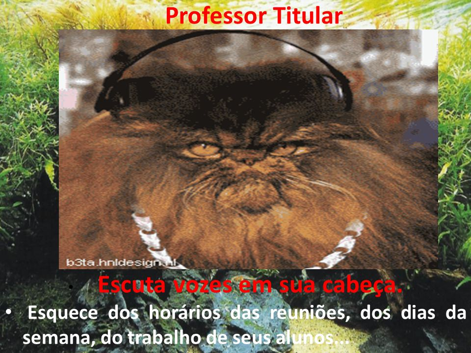 Professor Titular • Escuta vozes em sua cabeça. • Esquece dos horários das reuniões, dos dias da semana, do trabalho de seus alunos...