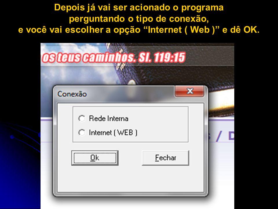 """Depois já vai ser acionado o programa perguntando o tipo de conexão, e você vai escolher a opção """"Internet ( Web )"""" e dê OK."""