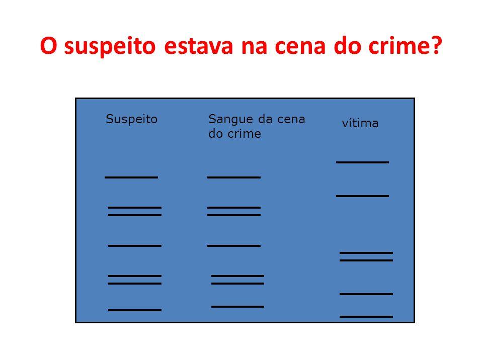 O suspeito estava na cena do crime? SuspeitoSangue da cena do crime vítima