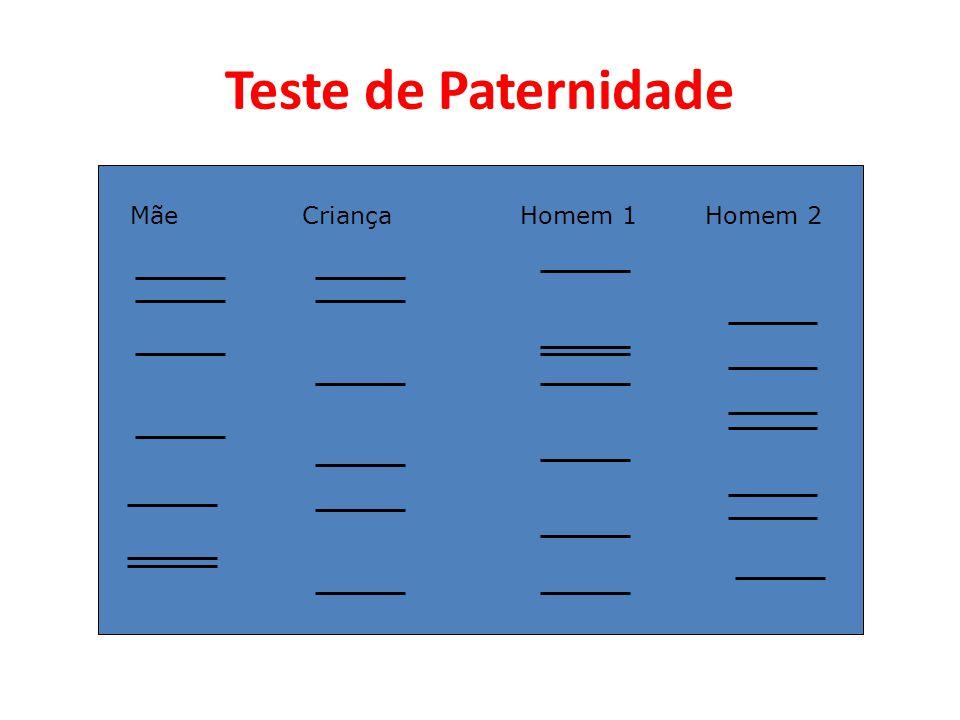 Teste de Paternidade Mãe Criança Homem 1 Homem 2