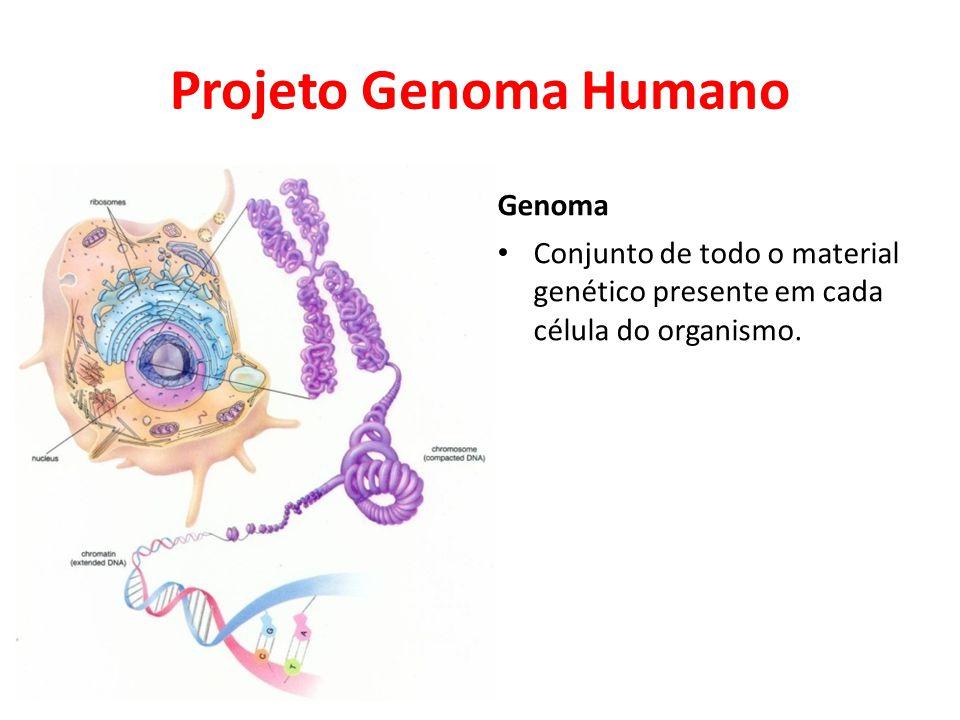 Projeto Genoma Humano Genoma • Conjunto de todo o material genético presente em cada célula do organismo.